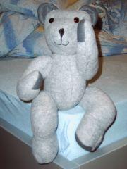Ugly Teddy